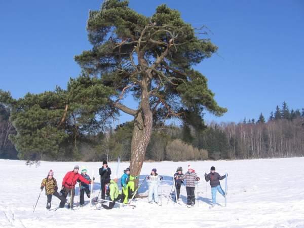 Winter Camp 2015 | Pod borovicí | foto wayne