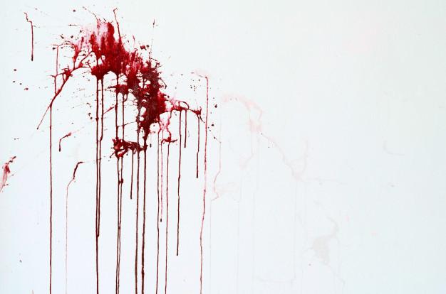 komar_krev